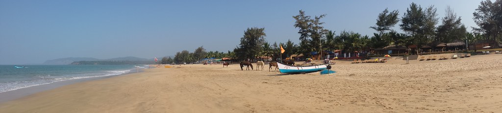Panorama of Agonda Beach complete with horses