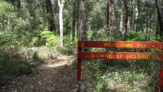 Day 26: Welcome to Donnelly District