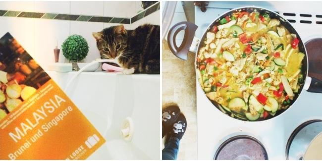 Thai-Curry, Katze Badewanne, Instagram
