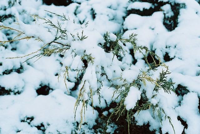April snowfall