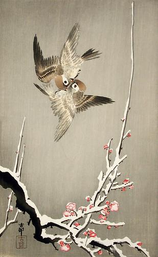 007-Gorriones y flores de ciruelo-Ohara Koson-via Lacma