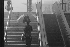 Commuting in a Downpour