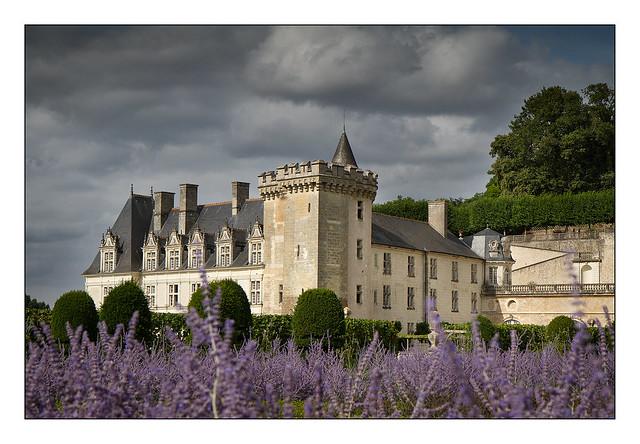 La lavande et le château