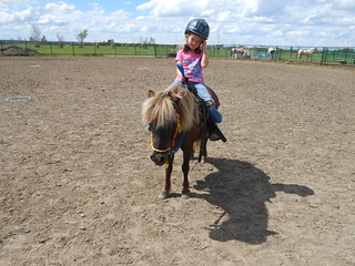 Horse Lessons 21Jun13 (1)