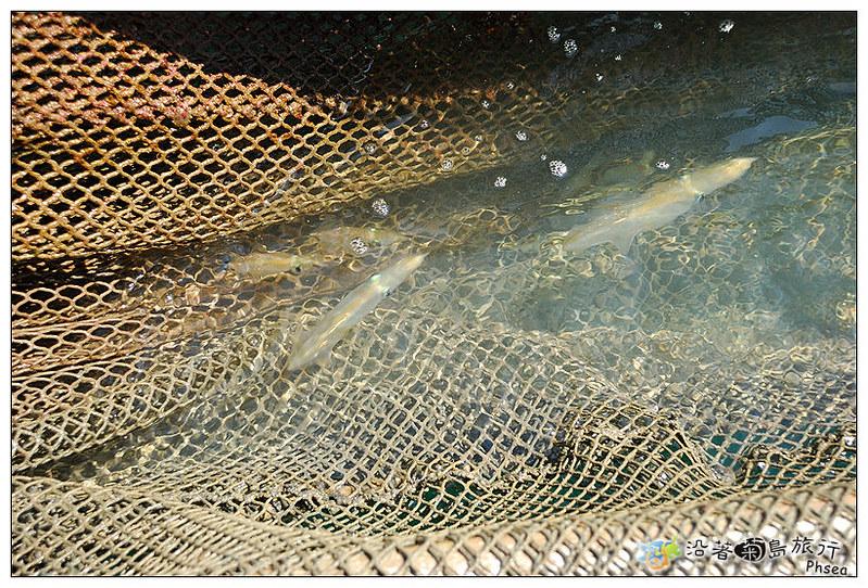 2013元貝休閒漁業_30