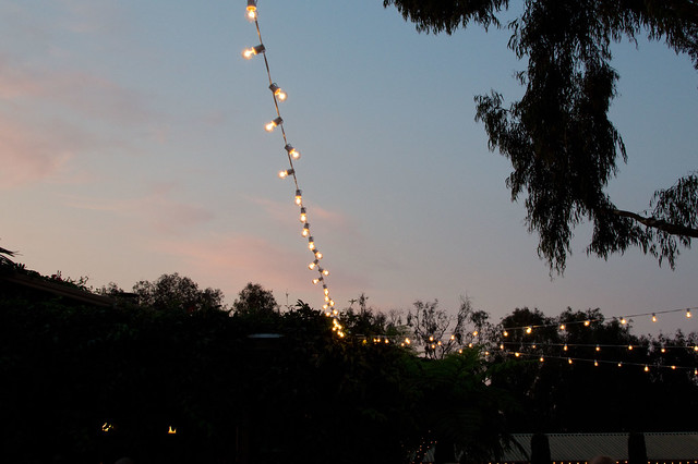 string lights at dusk