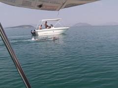 9ος κολυμβητικός διάπλους του Αμβρακικού Κόλπου