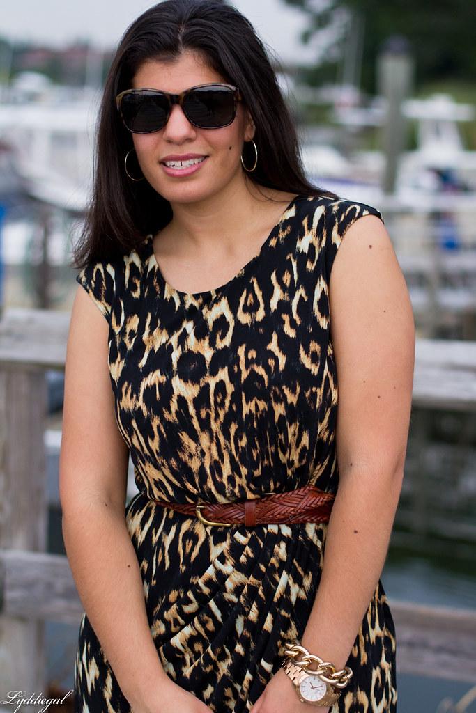 leopard dress 3