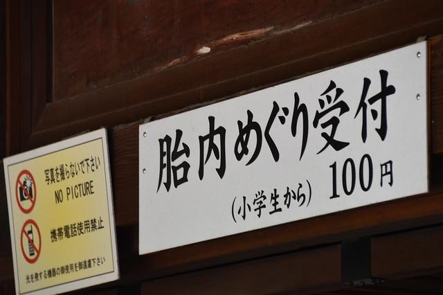 DSC_1004
