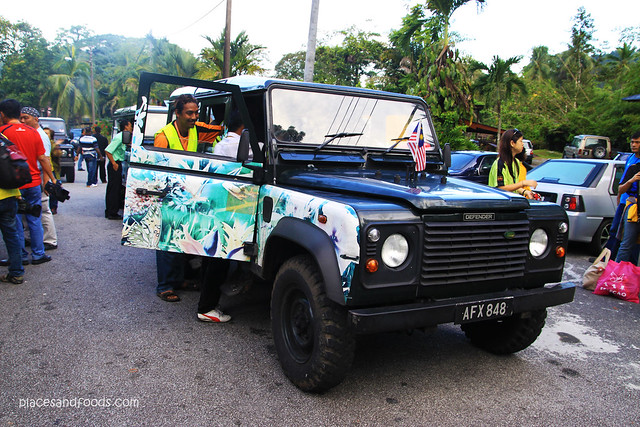 maxwell hill land rover