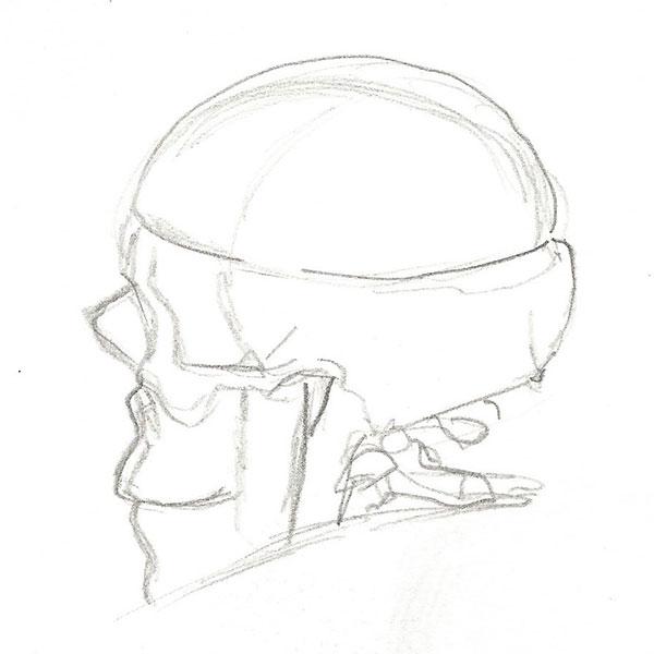 Skull_Sketch_04