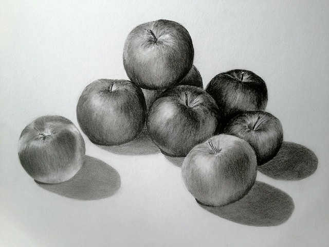 'Empire' Apples, charcoal pencil drawing by Miriam Kragness, 2013. BBG class: Drawing Explorations.