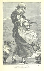 Image taken from page 445 of 'From Snowdon to the Sea. Striking stories of North and South Wales'
