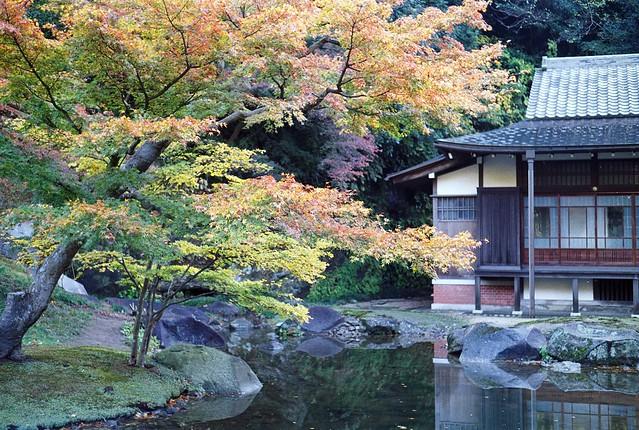 Photo:秋模様 in 鎌倉円覚寺 By:revelyrist