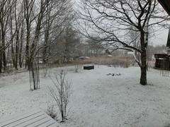 ワシ的今季初雪(^_^)/ 積もるかな?