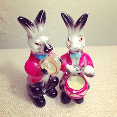 Mini Rabbits