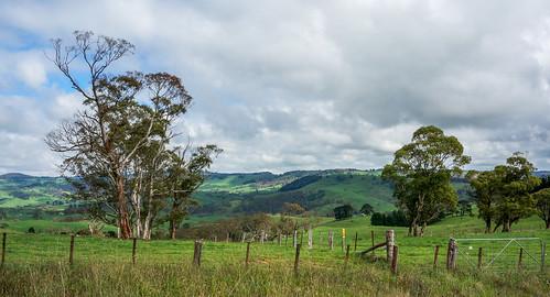 140330-DSC02067 Roadside View of Countryside NSW Australia.jpg