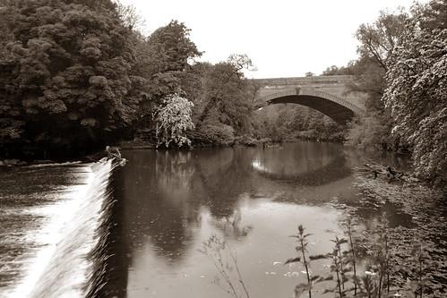 051 - Glasgow - Kelvingrove park