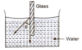 CBSE Class 11 Physics Notes : Surface Tension – AglaSem Schools