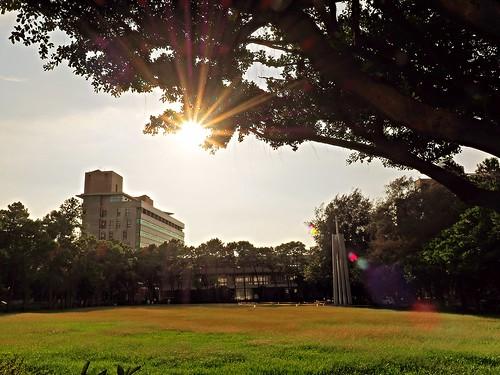 sunset sun university dusk flare jul 07 2014 夕照 大學 中原 七月 星芒