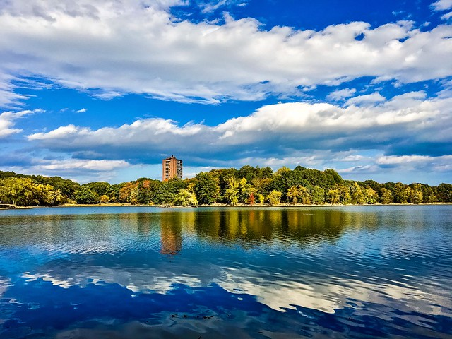 Jamaica Pond, Boston, In Fall