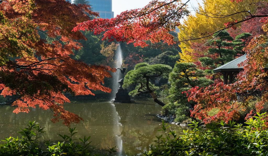 Projectile vomiting crane and autumn leaves at Hibiya Park