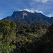 Mt. Kinabalu from below