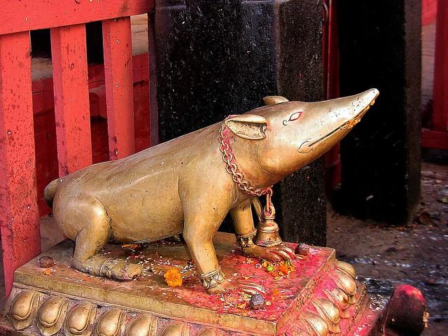 NEPAL, Kathmandu - unterwegs in der Altstadt, 15023