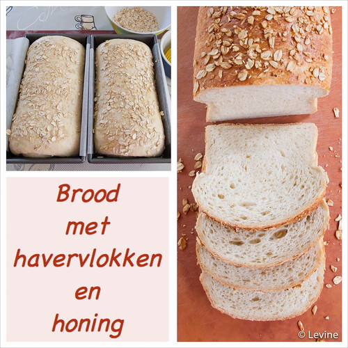 Brood met havervlokken en honing collage