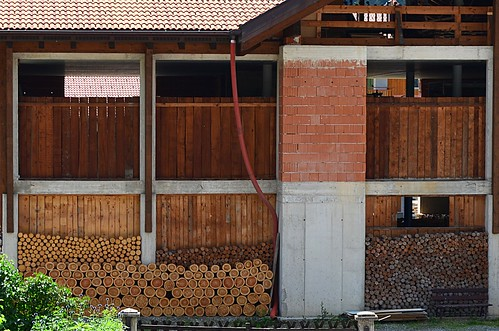 Stacking wood in Trentino