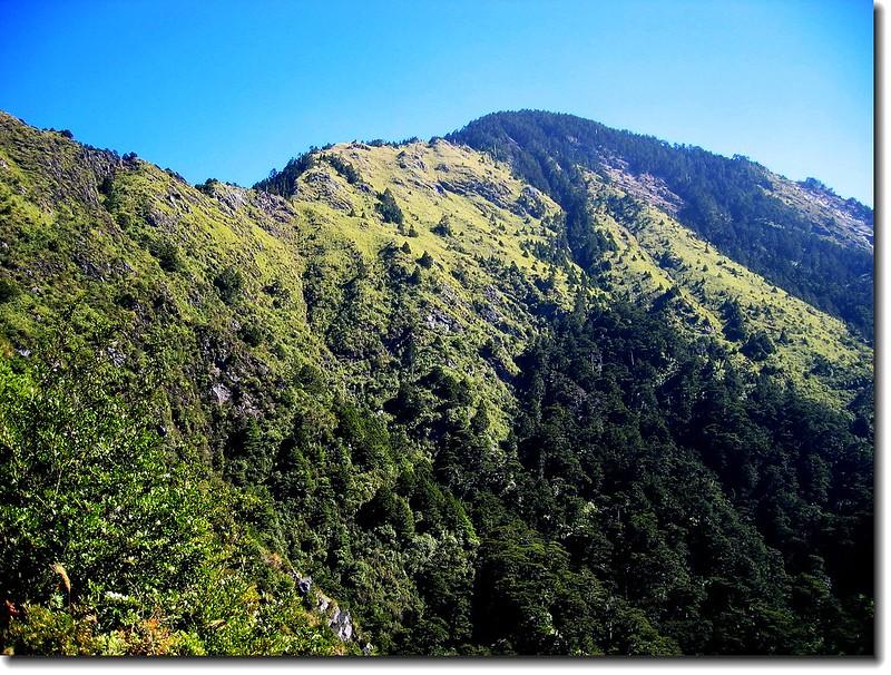 登山步道沿途景觀 1