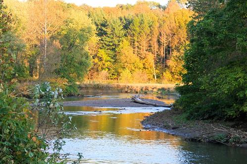 ohio nationalpark foliage cuyahogariver cuyahogavalleynp beavermarsh