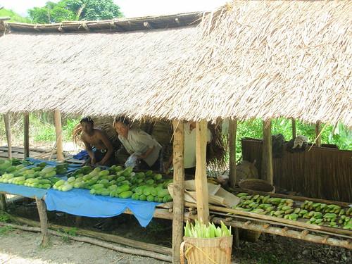 Luang Prabang-Vang Vieng-routee (187)