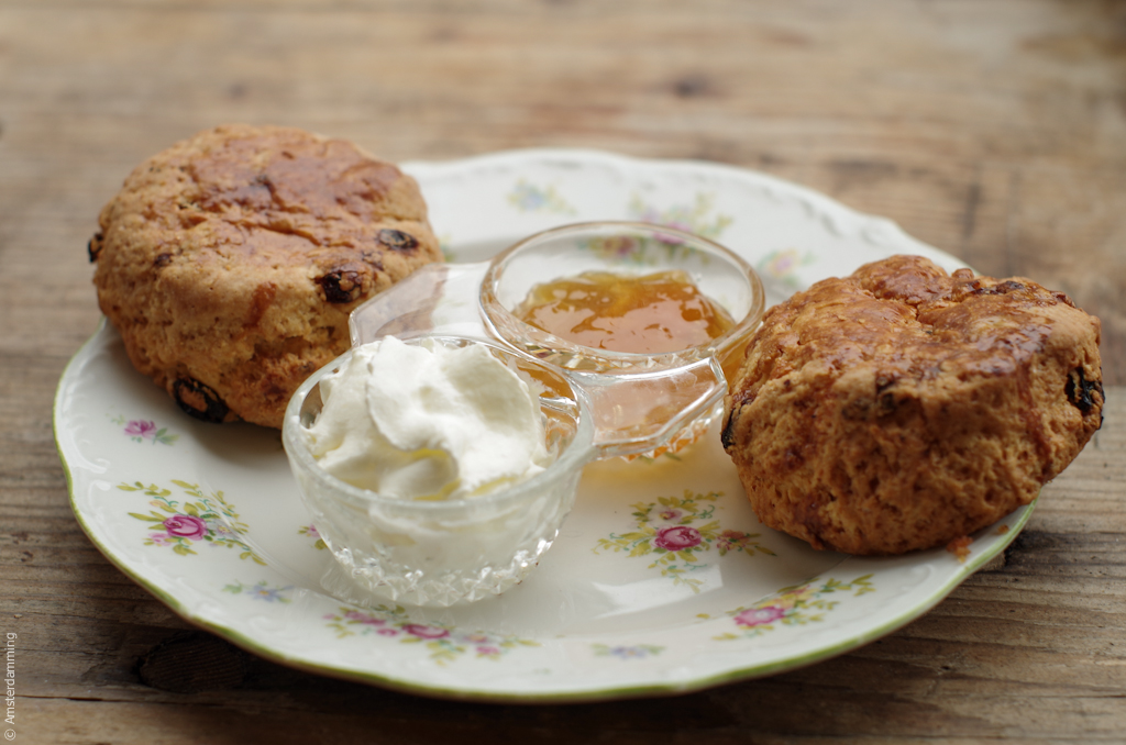 Amsterdam, Scones with Jam at Dish Global Kitchen on Overtoom