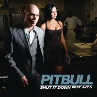 Pitbull – Shut It Down (feat. Akon)