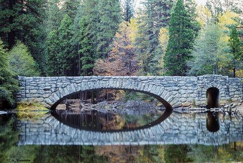 Another Bridge to Cross