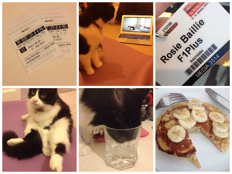 The week in photos #12 collage
