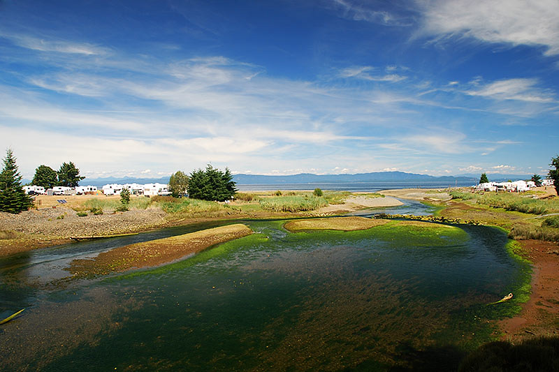 The Big Qualicum River, Qualicum Bay, Vancouver Island, British Columbia