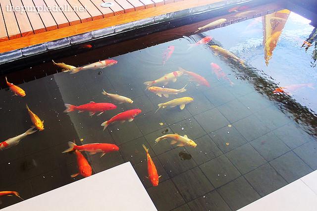 Koi Pond at Bellevue Manila