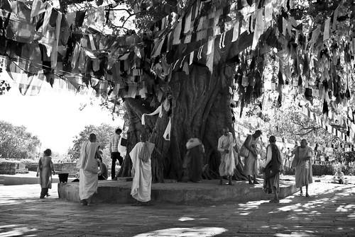 travel nepal portrait people blackandwhite bw tree men travelling monochrome garden asian asia buddha candid buddhist flag monk buddhism flags monks portraiture nepalese prayerflags buddhisttemple pilgrim nepali pilgrims prayerflag southasia buddhistmonks southasian buddhistmonk travelphotography lumbini candidportraiture rupandehi rupandehidistrict