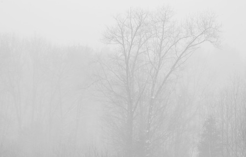 White Out by Lotterhand