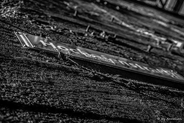 Landschaftpark zwart wit (2)