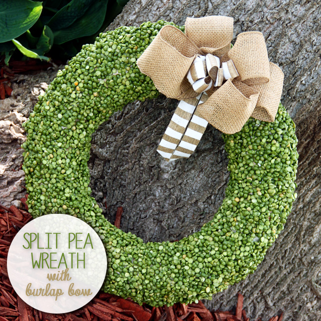Split-Pea-Wreath-with-Burlap-Bow-650x650