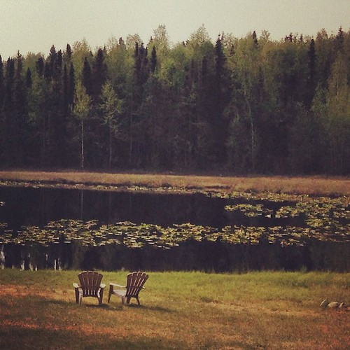 Stopping for a roadside meal. This is the view from the back of the restaurant. #alaska