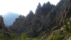 Dans la remontée du ruisseau de Vetta di Muru vers 1550m