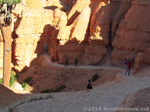The trail switchbacks down to an archway through a hoodoo on the Queens Garden Trail, Bryce Canyon National Park, Utah