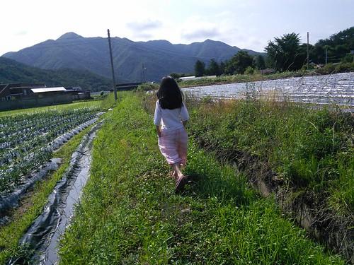 견훤산성 | 시골집풍경