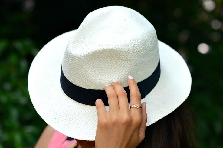 DSC_7839 Panama hat
