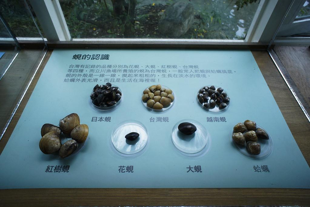 壽豐立川漁場 (11)
