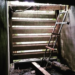 SUBSCRIBE to #SurvivalBros on #YouTube - Watch the video Tillamook Head #WW2 #Bunker #Explored in #Oregon #Cam